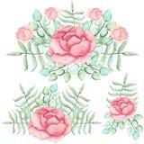 套与玫瑰和蕨的水彩花束 免版税库存图片