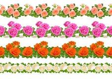 套与玫瑰的无缝的边界 背景查出的白色 免版税库存照片