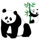 套与竹子的逗人喜爱的熊猫 向量例证