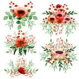 套与红色花的水彩生动的花束 免版税库存照片