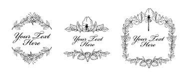 套与花的葡萄酒标签 免版税库存图片