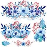 套与蓝色叶子、花和红色莓果的水彩花束 免版税库存图片