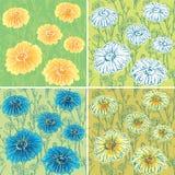套与雏菊花的无缝的样式 库存图片