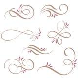 套书法与葡萄酒装饰螺纹的华丽艺术设计的 向量例证EPS10 库存例证