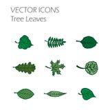 套五颜六色的手拉的树叶子 图库摄影