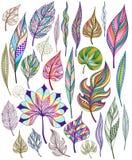 套五颜六色的抽象叶子 向量 免版税库存图片
