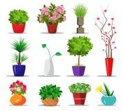 套五颜六色的花盆和花瓶房子的 平的植物和花的样式室内罐 也corel凹道例证向量 免版税库存照片