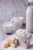 套产品咸味干乳酪、青纹干酪、酸奶干酪和牛奶 库存照片
