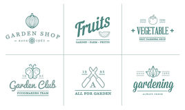 套传染媒介庭院和农厂元素和水果或者蔬菜象例证可以使用作为商标 库存图片