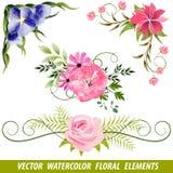 套传染媒介水彩花卉元素 免版税库存照片