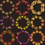 套传染媒介缠绕与秋叶莓果和橡子vect 免版税库存图片