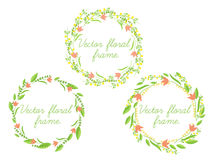 套传染媒介花卉框架 免版税图库摄影