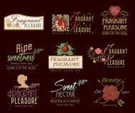 套减速火箭的美容院温泉商标、标签和徽章 免版税图库摄影