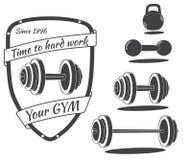 套单色健身房设备 库存例证
