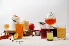 套各种各样的冬天鸡尾酒 免版税库存图片