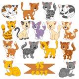 套各种各样的逗人喜爱的猫 库存图片