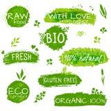 套商标,邮票,徽章,自然eco产品的,农场标签,有机 花卉元素和脏的纹理 绿色 库存照片
