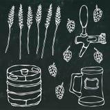 套啤酒对象:蛇麻草,麦芽,杯子,轻拍,小桶 在黑黑板背景 现实乱画动画片样式 免版税库存图片