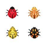 套四只瓢虫用不同的颜色 库存照片