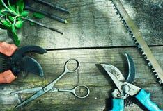 套园艺工具 修剪在庭院里 库存图片