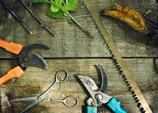 套园艺工具 免版税图库摄影