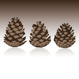 套在传染媒介的pinecones 图库摄影