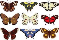 套在平的样式的白色背景隔绝的五颜六色的蝴蝶的不同的类型 也corel凹道例证向量 图库摄影