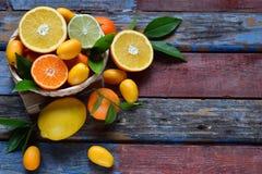 套在木背景的柑橘:桔子,普通话,柠檬,葡萄柚,石灰,金桔,蜜桔 新鲜的有机水多的果子 sou 免版税库存图片