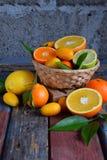 套在木背景的柑橘:桔子,普通话,柠檬,葡萄柚,石灰,金桔,蜜桔 新鲜的有机水多的果子 sou 免版税库存照片