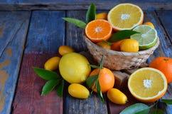套在木背景的柑橘:桔子,普通话,柠檬,葡萄柚,石灰,金桔,蜜桔 新鲜的有机水多的果子 sou 库存照片