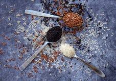 套在灰色背景的不同的类型米:白色糯,黑,巴丝马香米,棕色和混杂的米 健康的概念 顶视图 免版税库存图片