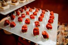 套在红色釉的咸小开胃菜装饰用各式各样的蕃茄和microgreens 免版税库存照片