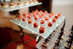 套在红色釉的咸小开胃菜装饰用各式各样的蕃茄 库存照片