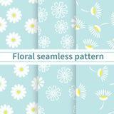 套在蓝色背景的简单的概要白花 flor 库存照片