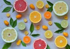 套在轻的背景的柑橘:桔子,普通话,柠檬,葡萄柚,石灰,金桔,蜜桔 新鲜的有机水多的果子 酸 免版税库存图片