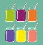 套在金属螺盖玻璃瓶的6名不同新鲜水果和莓果圆滑的人有秸杆的 向量手拉的例证 向量例证