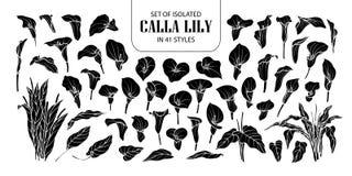 套在41个样式的被隔绝的剪影水芋百合 在白色概述的逗人喜爱的手拉的花传染媒介例证和黑色飞行 库存例证