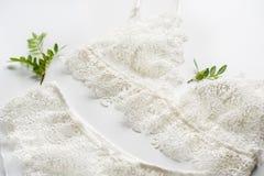 套女用贴身内衣裤,米黄与黑白色丝带 在用开心果绿色小树枝装饰的白色背景  免版税库存图片