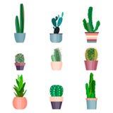 套您的设计的优质手画水彩元素与多汁植物,仙人掌和更多 理想 皇族释放例证