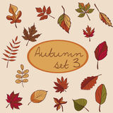 套您的设计的秋叶 免版税库存照片