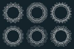 套手拉的墨水绘了白色花卉花圈和月桂树 免版税图库摄影