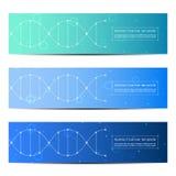 套抽象横幅设计,脱氧核糖核酸分子结构背景 几何图表和被连接的线与小点 库存图片