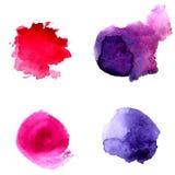 套抽象紫罗兰色和桃红色水彩圈子 商标和文本的传染媒介背景 库存图片