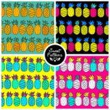 套无缝的夏天样式用少年的热带菠萝 免版税图库摄影
