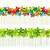 套无缝的花卉边界 向量例证