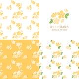 套无缝的黄色花纹花样 库存照片