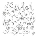 套春天植物、花和动物 免版税库存图片
