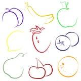 套果子和莓果在白色背景 库存例证