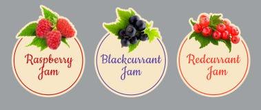 套果子果酱的标签 另外的背景是多种向量白色将的浆果图标查出的集合排序 免版税图库摄影