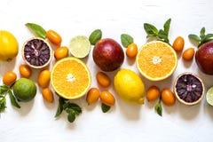 套柑橘水果橙红、柠檬、金桔和薄荷叶 库存图片